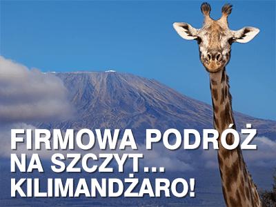 Firmowa podróż na szczyt… Kilimandżaro!